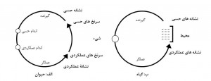 Pages from مسئله ذهن – بدن در پزشکی _Page_3